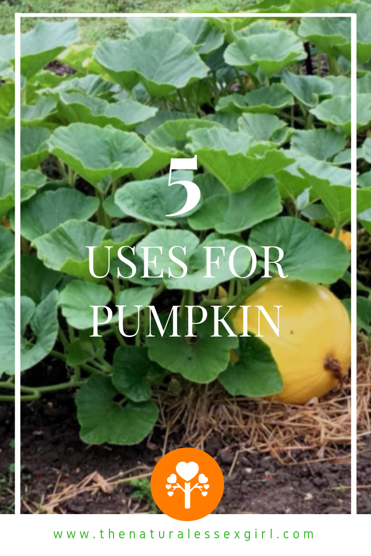 5 Uses for Pumpkin with The Natural Essex Girl