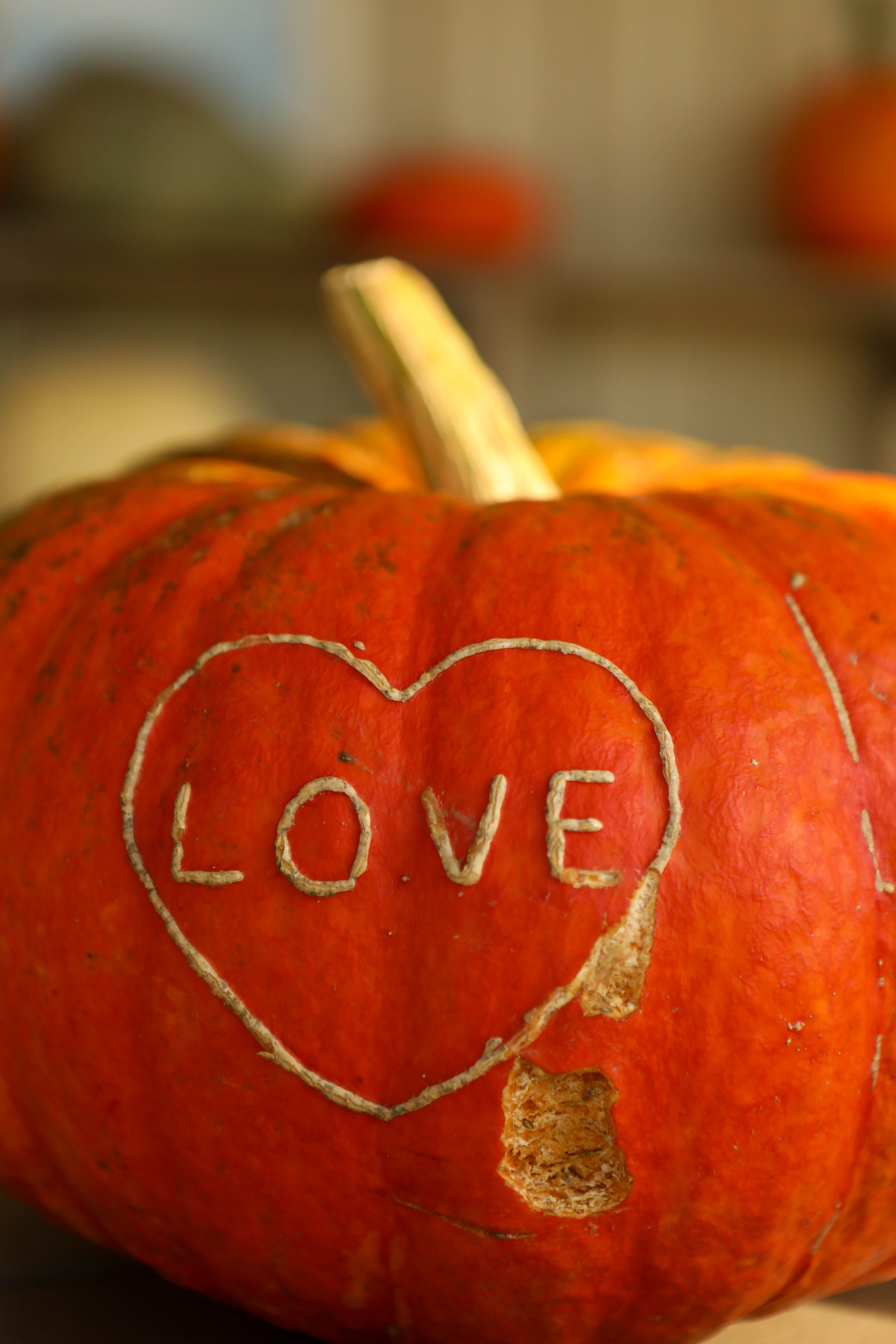 Love Pumpkin