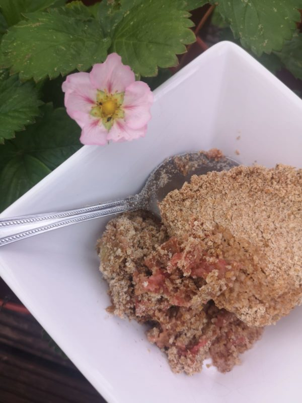 Vegan Strawberry & Rhubarb Crumble with The Natural Essex girl