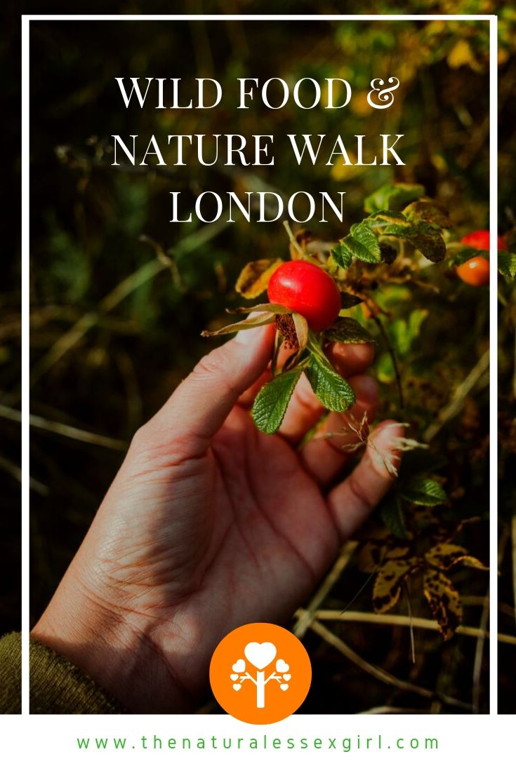 London Foraging Experience with The Natural Essex Girl